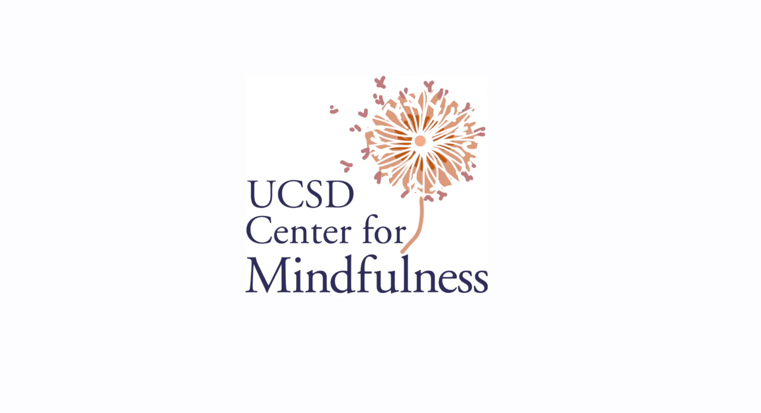 free guided mindfulness meditations and classes